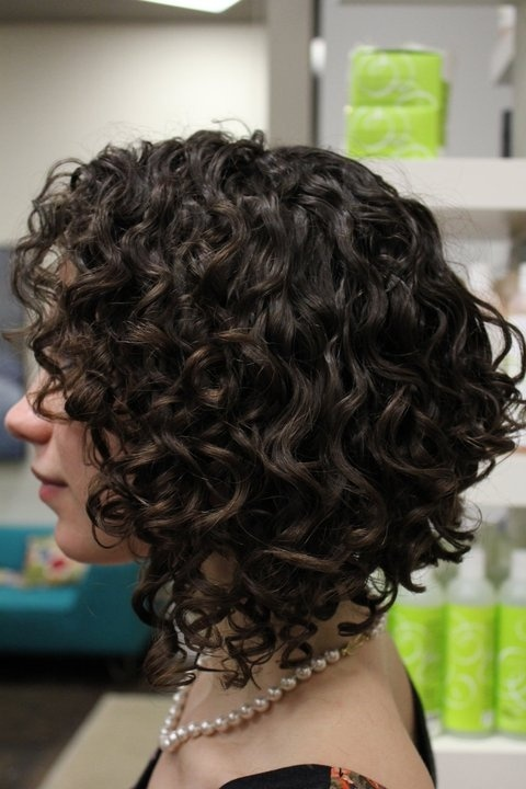 Medium Length Brown Curly Bob
