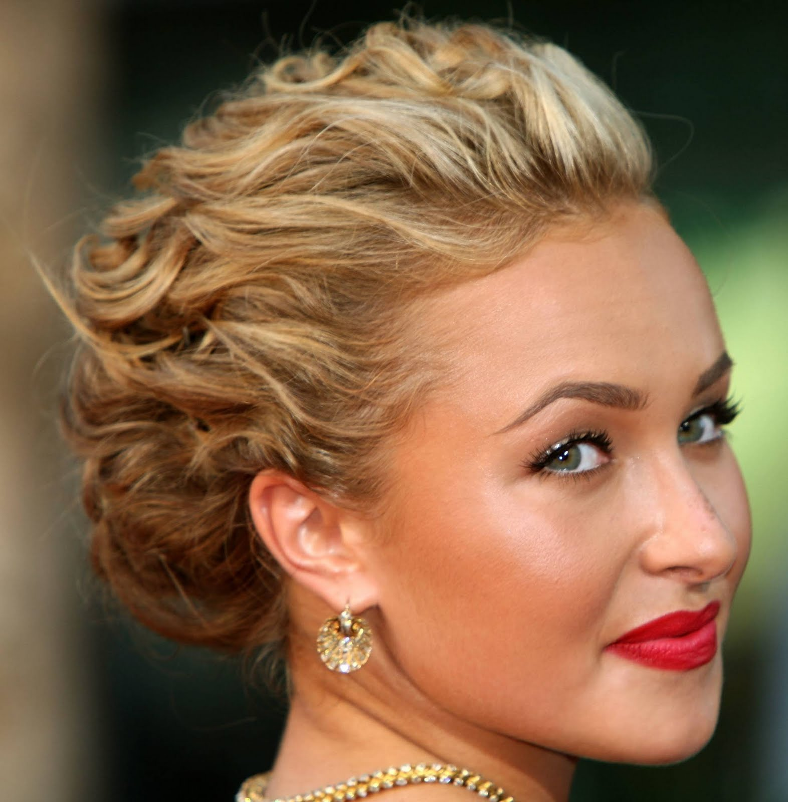 Hayden Panettiere Curly Hair Style Updo